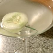 The Hendrick's Gin Martini
