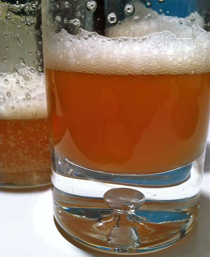 Home Brewed Ipa Cocktail Recipe With Drink Picture